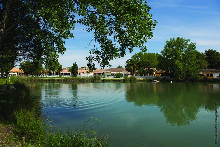 organiser-un-séminaire-en-Camargue-séminaire-magazine-Businessevent-séminaire-Village-Camarguais-10