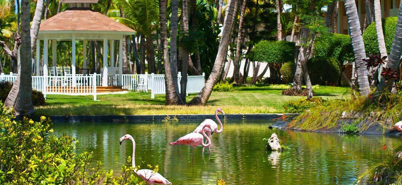 PUJSLNIA-partir-vacances-club-lookea-catalonia-bavaro-voyages-republique-dominicaine-tui